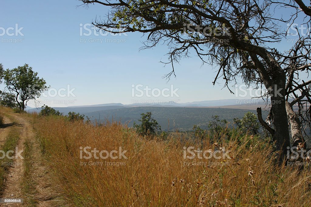 Road to the blue yonder royalty-free stock photo