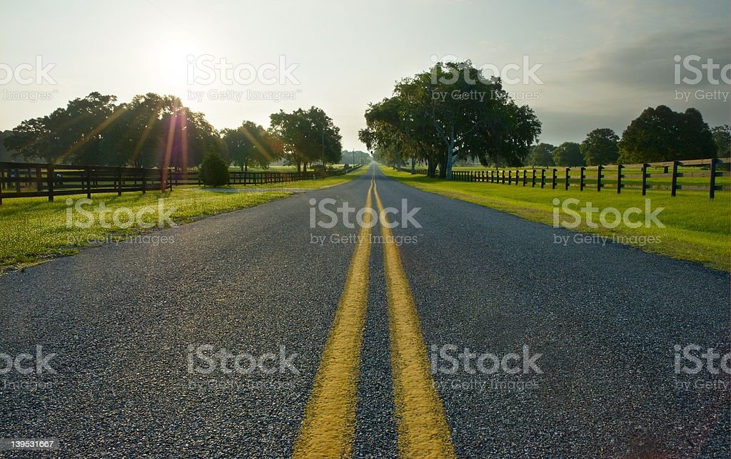 Road to the farms royalty-free stock photo