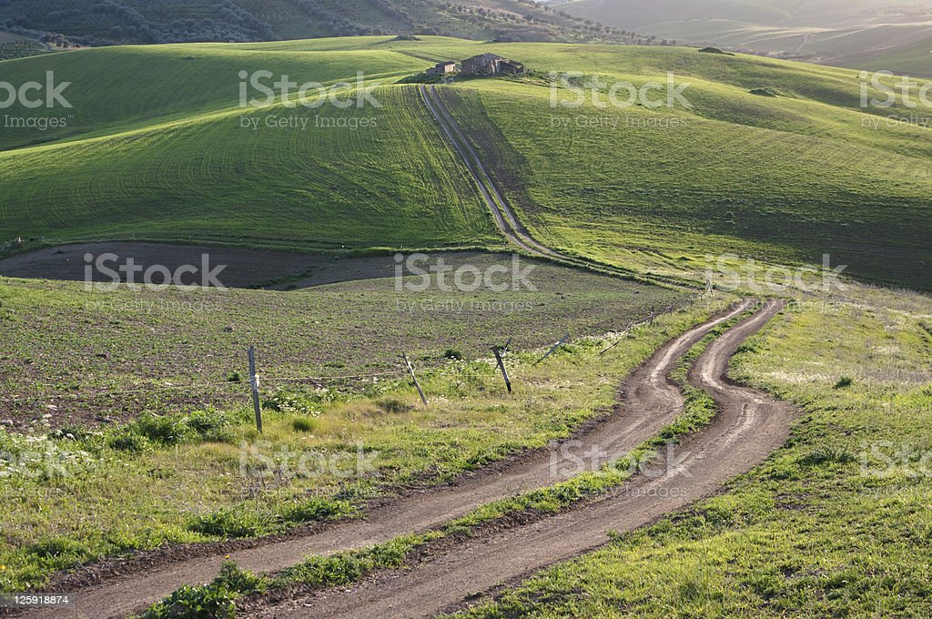 Road To The Old Farm royalty-free stock photo