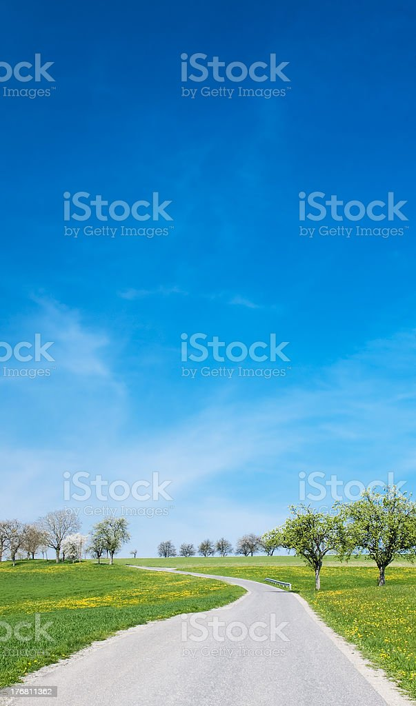 Road to the Spring royalty-free stock photo
