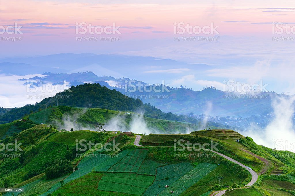 Road to top of misty hill at dawn Thailand royalty-free stock photo