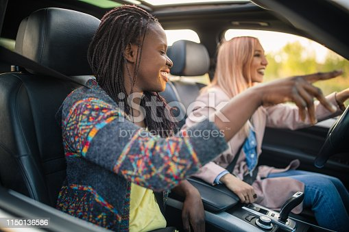 812419994 istock photo Road trip with a best friend 1150136586