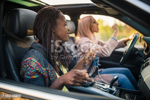 812419994istockphoto Road trip with a friend 1150136904