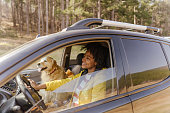 istock Road trip with my best friend 1324380685