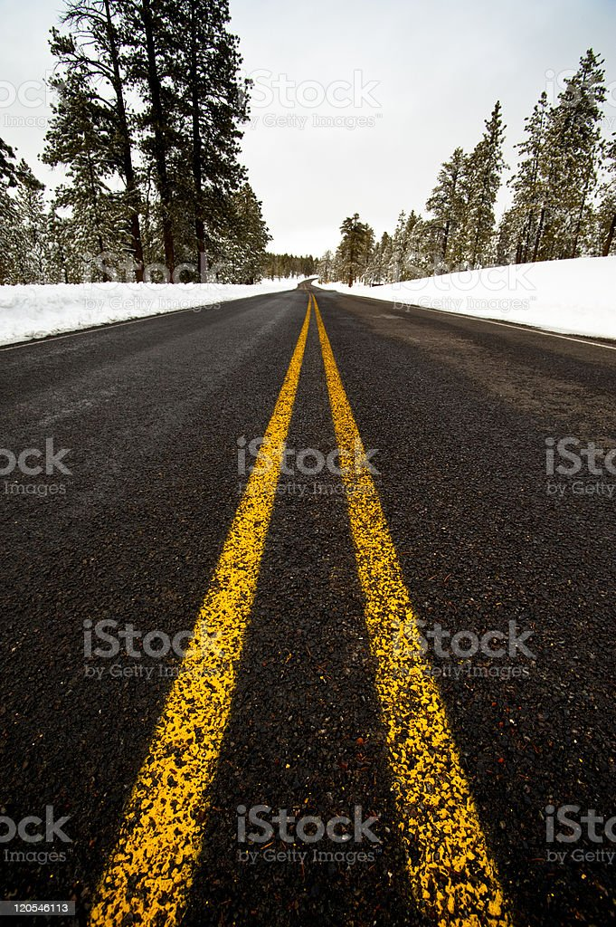 Road View royalty-free stock photo