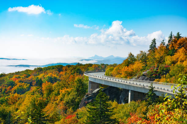 Road winding in the autumn mountains. stock photo