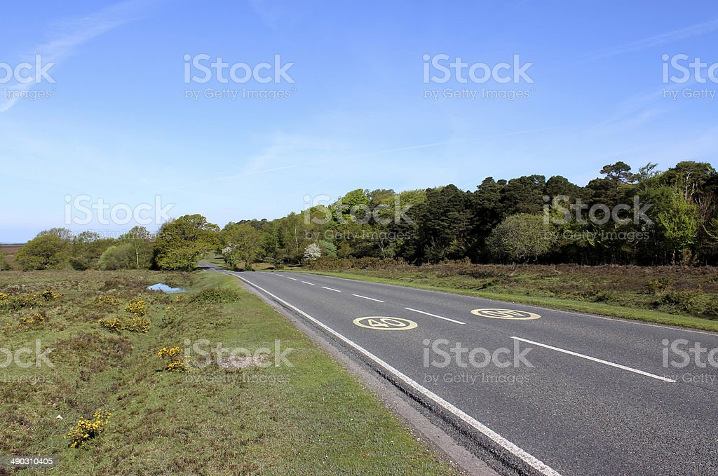 Road with 40 mph speed limit painted tarmac, New Forest stock photo