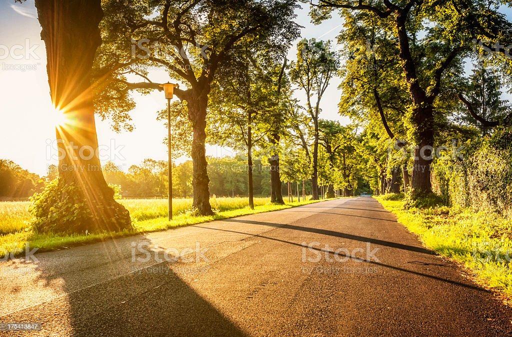 Straße am Abend mit Sonnenlicht – Foto