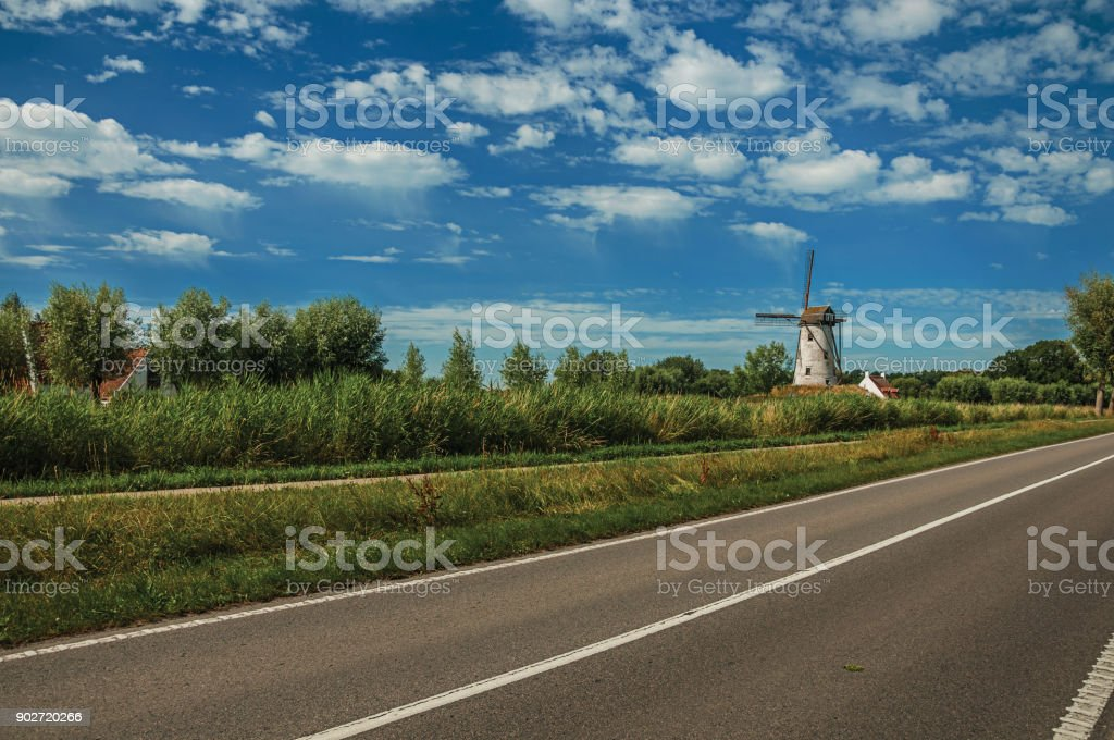 Road with old windmill and bushes in the background, in the late afternoon light and blue sky near Damme. stock photo