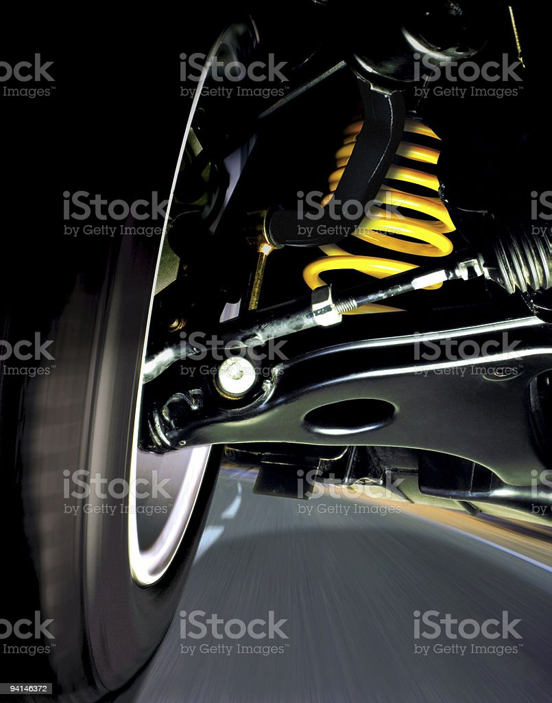 Roadfly stock photo