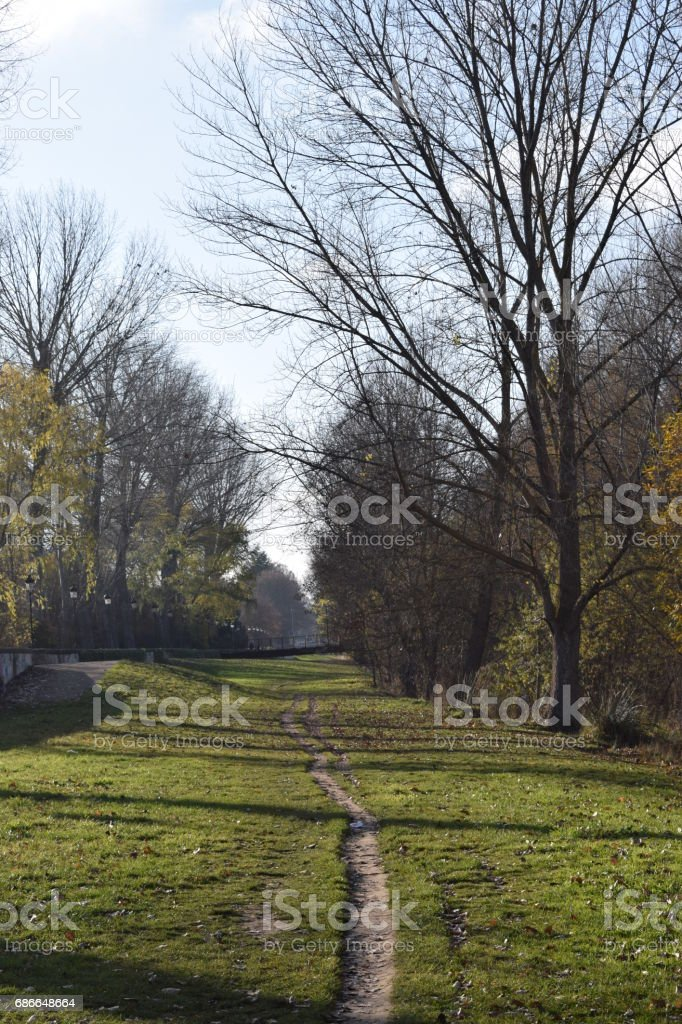 Roads during autumn and winter. royalty-free stock photo