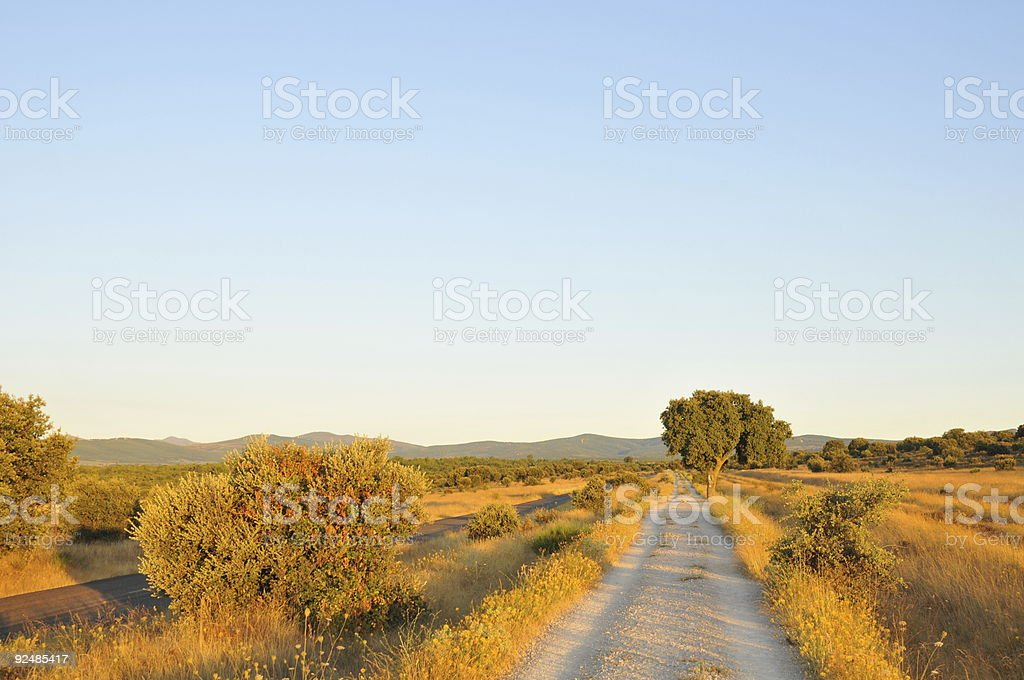 roads in the plains royalty-free stock photo
