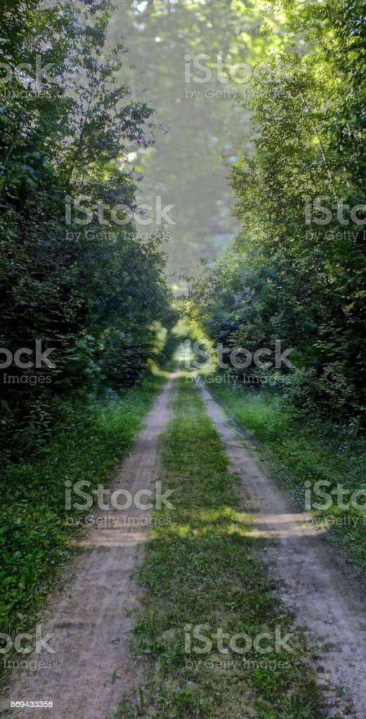 Roads You'll Never Travel royalty-free stock photo
