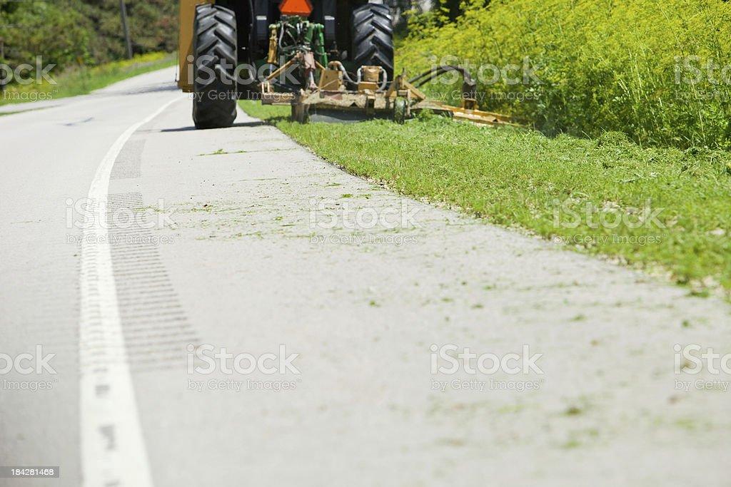 Roadside Cutting Wild Parsnip stock photo