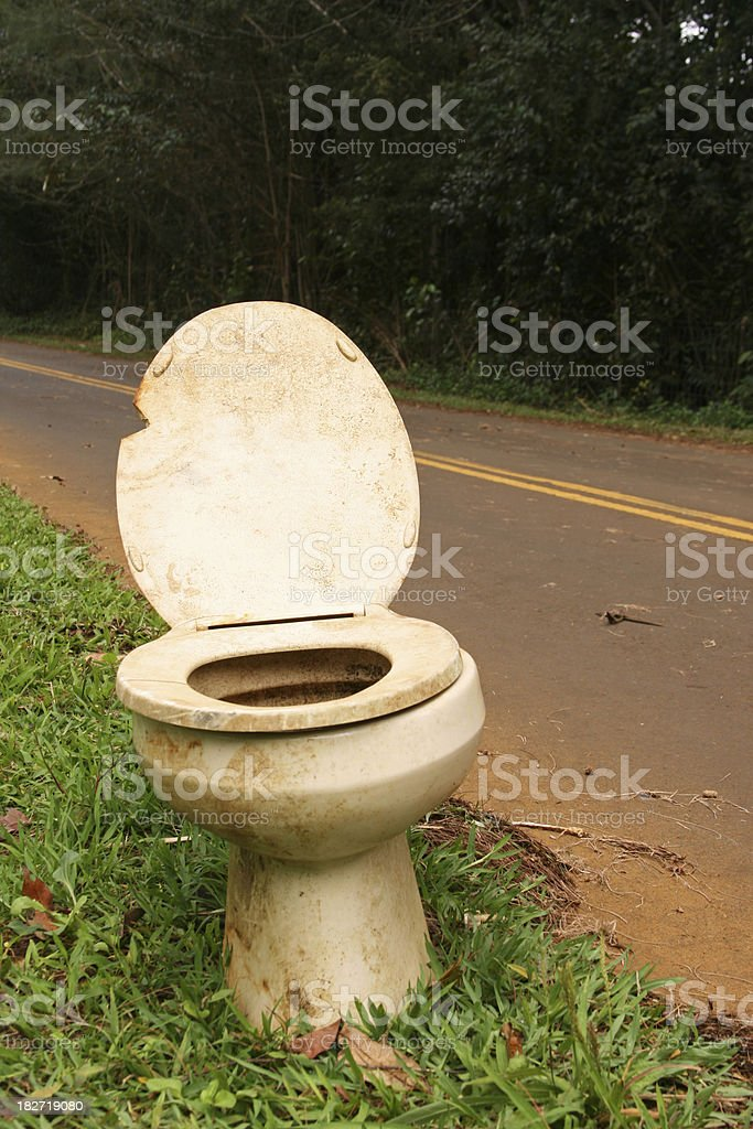 Roadside Toilet stock photo