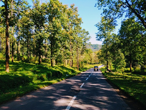 Early morning ride in Wayanad, Kerala(India) through the lush green forests.
