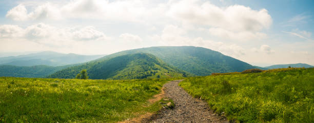 Roan Highlands: Bright Sky Up in the Roan mountains, TN/NC. appalachian trail stock pictures, royalty-free photos & images