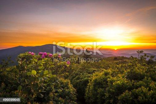 istock Roan Mountain Sunset 499599645