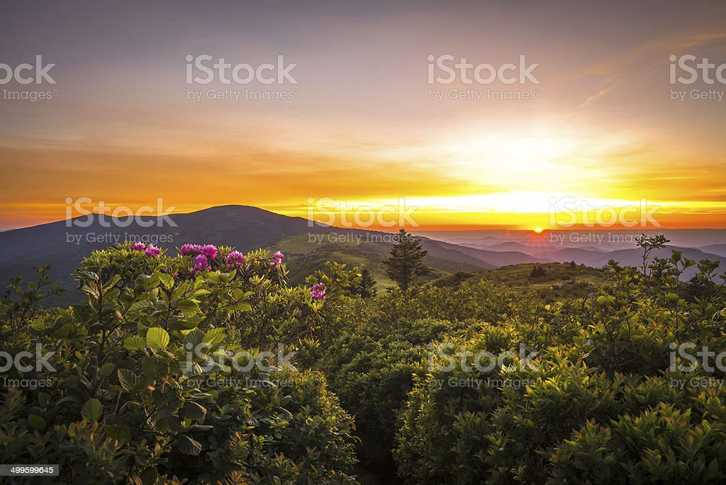 Roan Mountain Sunset stock photo