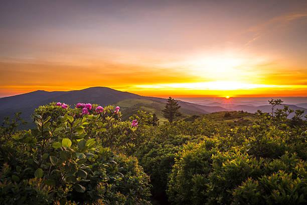 roan mountain sunset - 東方 個照片及圖片檔