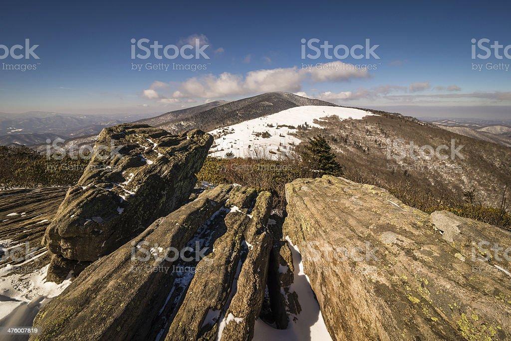 Roan Winter 2 stock photo