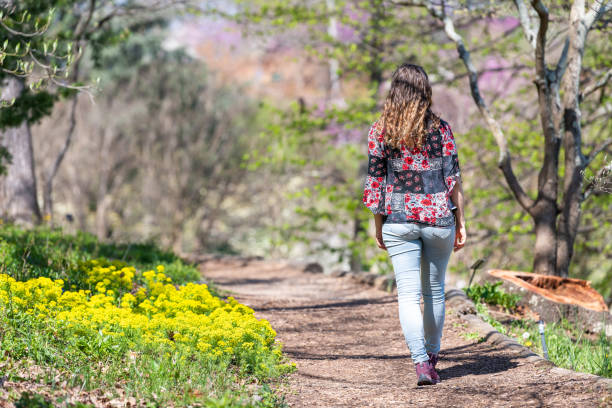 Roanoke, USA Mill Mountain Park in Virginia during spring with Wildflower garden yellow wild flowers and young woman walking on path stock photo