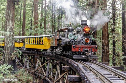 Felton, California - December 29, 2019: Roaring Camp' Dixiana Shay Steam Train over Trestle Crossing Redwood Forest