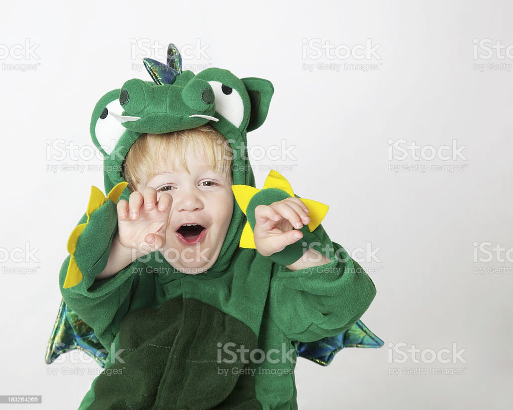 Roaring Dragon royalty-free stock photo