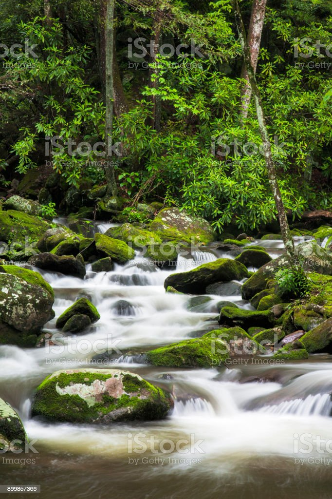 Roaring Fork Creek in the Great Smoky Mountains USA stock photo