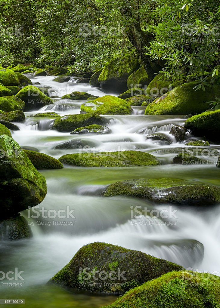 Roaring Fork Creek, Smoky Mountains National Park stock photo