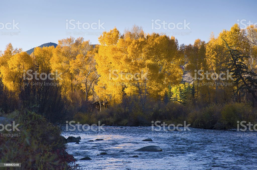 Roaring Fork River in Fall stock photo