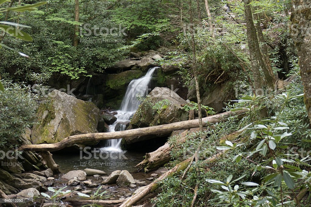 Roaring Fork River waterfall forest Smoky Mountains NP Tennessee stock photo