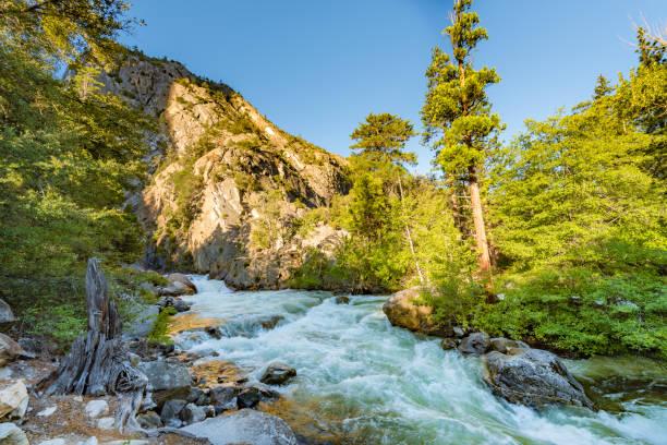 Roaring River Falls, Kings Canyon National Park stock photo