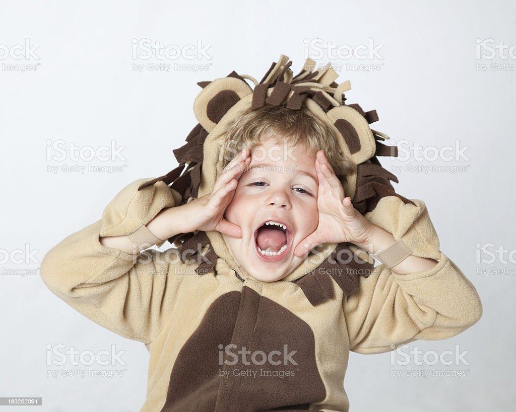 Roarrrrrr Says The Little Lion stock photo