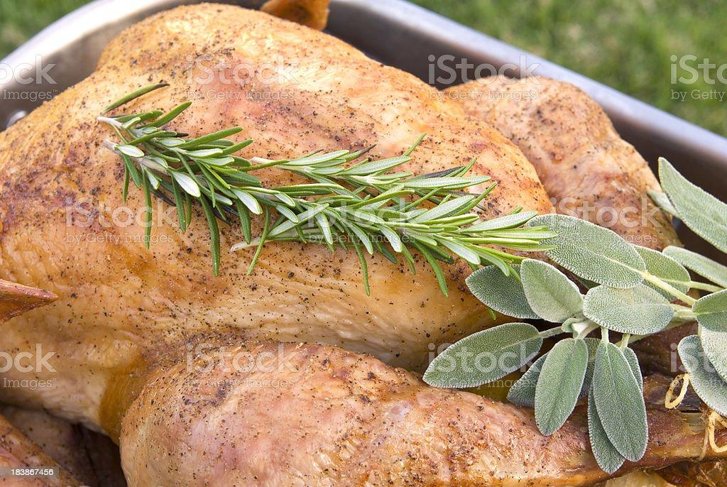 Roast Turkey Cooking in Baking Pan royalty-free stock photo