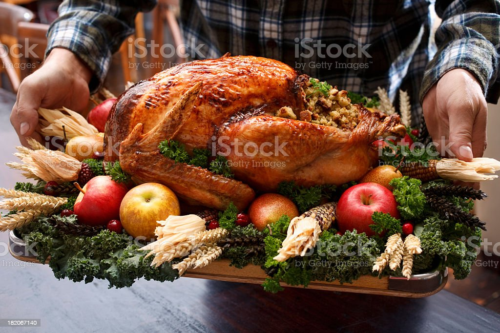Roast turkey dinner straight out of oven royalty-free stock photo