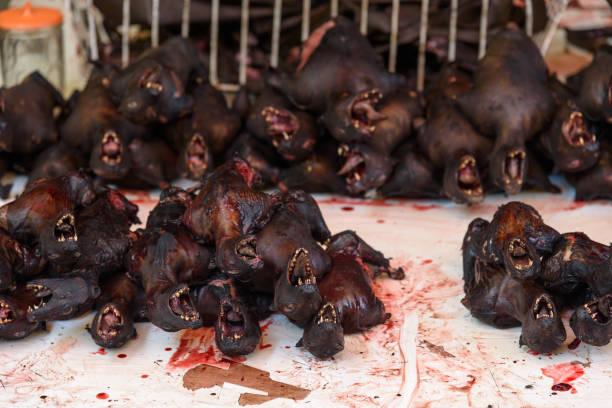 gebratene fledermäuse auf tomohon traditionellen markt - streetfood stock-fotos und bilder