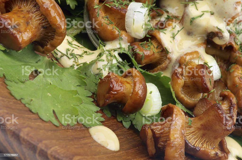 Roasted Chanterelles with  Cheese Sauce royalty-free stock photo