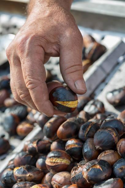 gebratene kastanien - heisse maroni stock-fotos und bilder