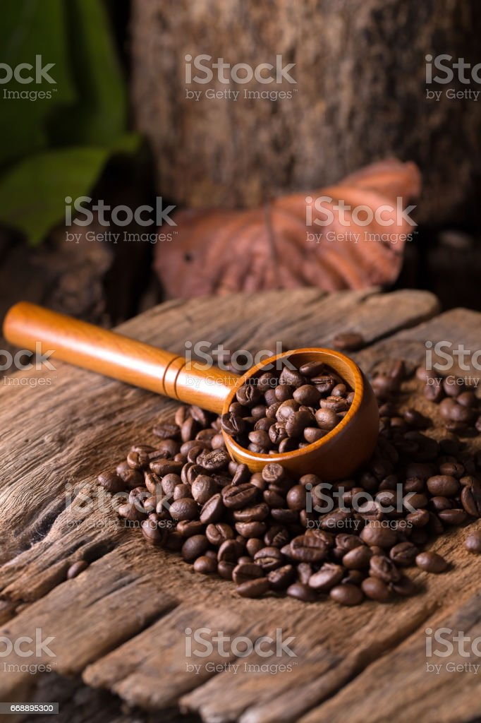 Roasted Coffee Beans And Green Coffee Bean On Wooden Stock Photo