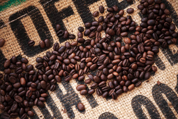 Roasted coffee beans are on jute bag fabric stock photo