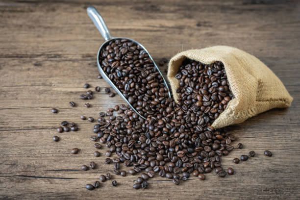 Roasted coffee beans in fabric bag and scoop stock photo
