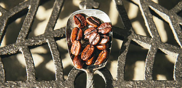 Roasted Coffee Beans on a Spoon stock photo
