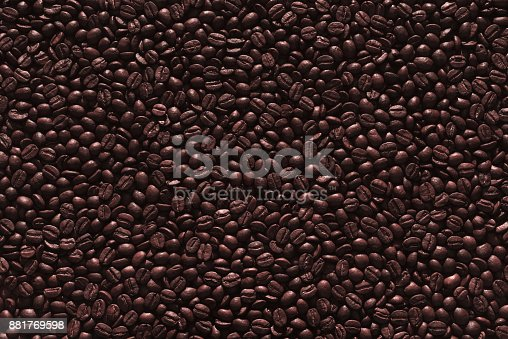 842365806 istock photo Roasted Coffee Beans 881769598