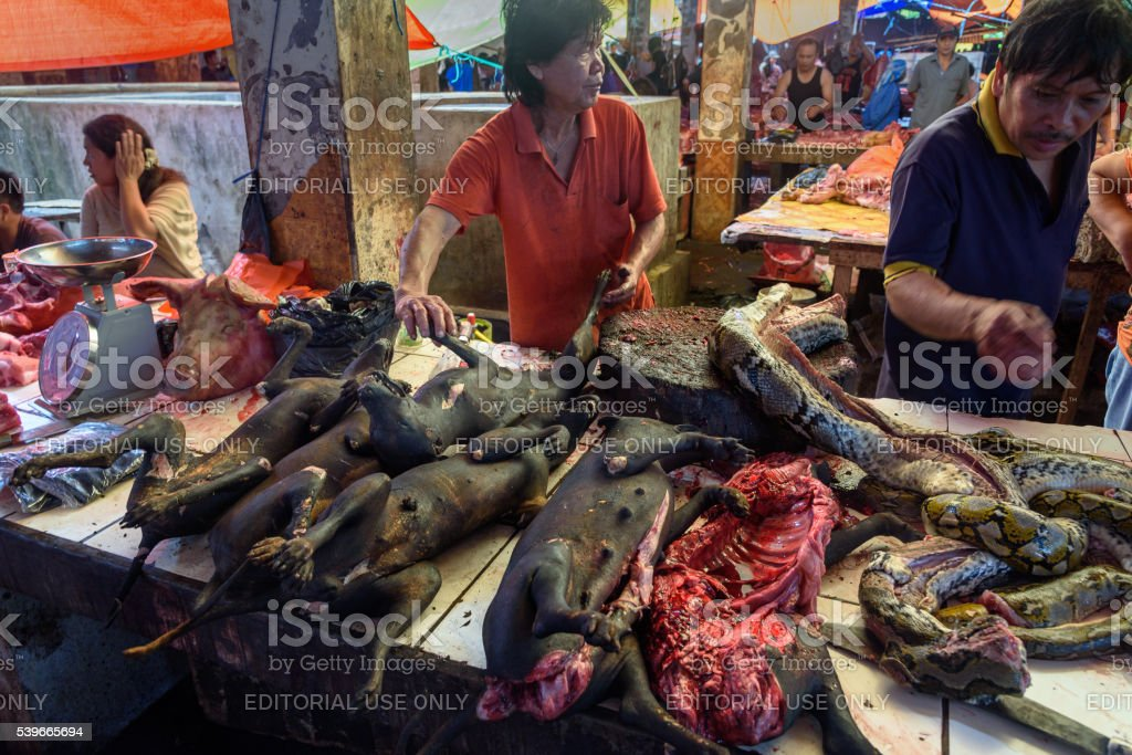Roasted dogs on Tomohon Traditional Market stock photo