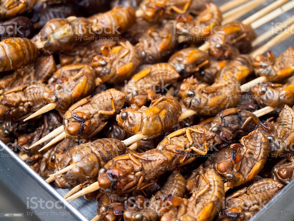 Roasted fried insects and scorpions as snack street food stock photo