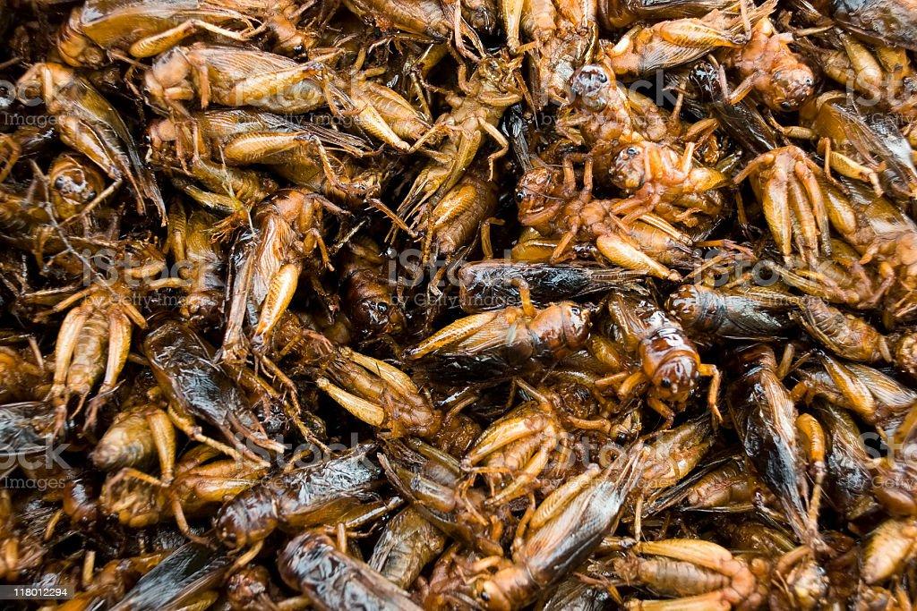 Roasted grasshopper snacks in Phnom Penh, Cambodia royalty-free stock photo