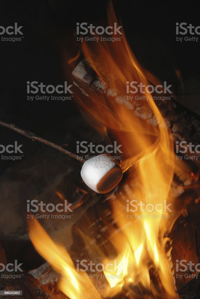 marshmallow arrostito foto stock royalty-free