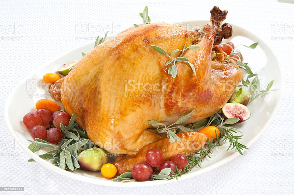 Roasted Turkey on tray over white stock photo
