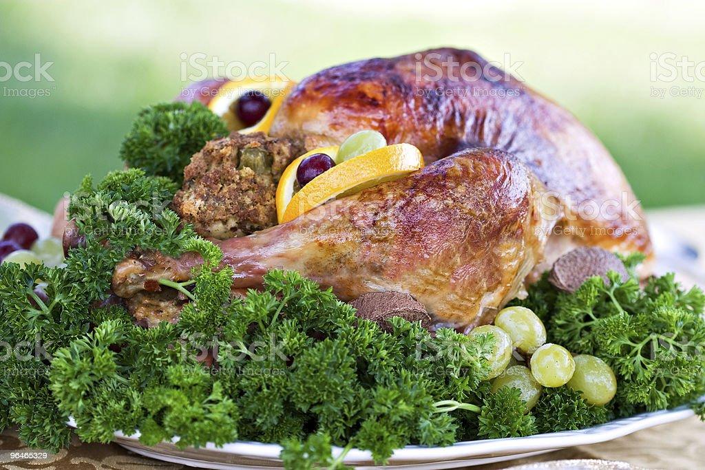 Roasted Turkey royalty-free stock photo